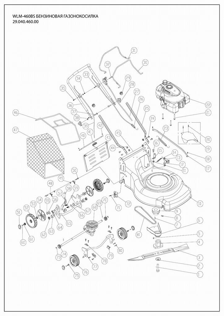 Деталировка на бензиновую газонокосилку WATT WLM-460 (29.040.460.00)
